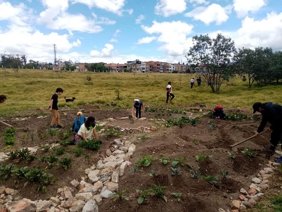 Huerta comunitaria en el sur de Bogotá / Foto cortesía Movimiento Periferia