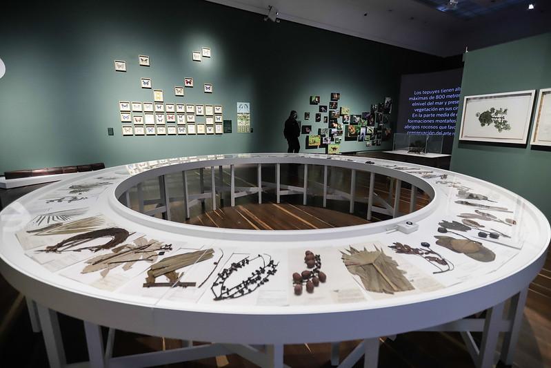 Foto: Museo Nacional de Colombia