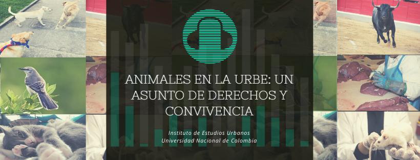 PodcastUNRadio: Relatos de Gobierno Urbano